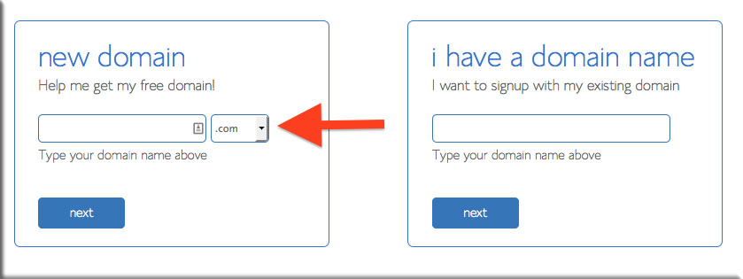 DomainScreenCapture