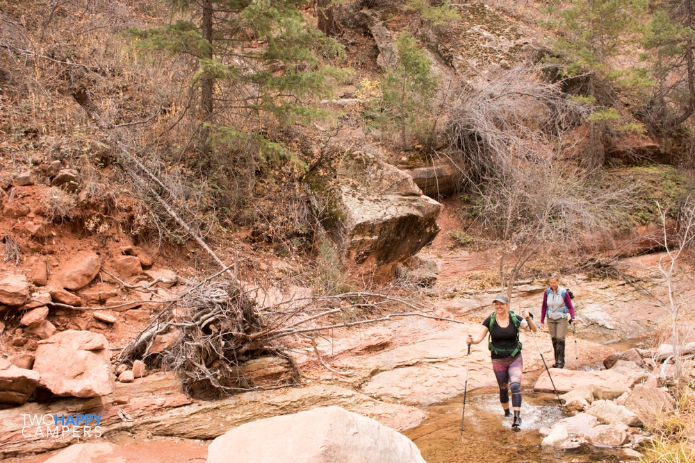 zion national park hike